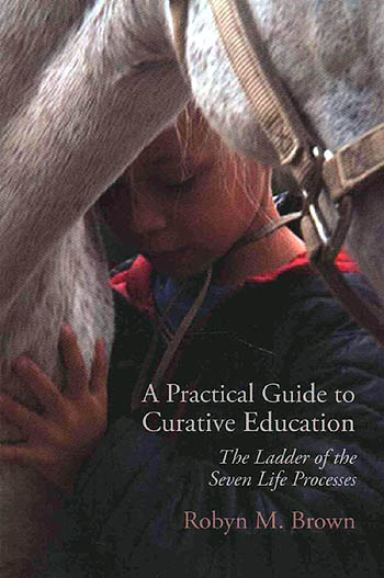 book: Curative Education